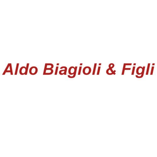 Piese plug Aldo Biagioli